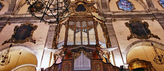 organ-alaro